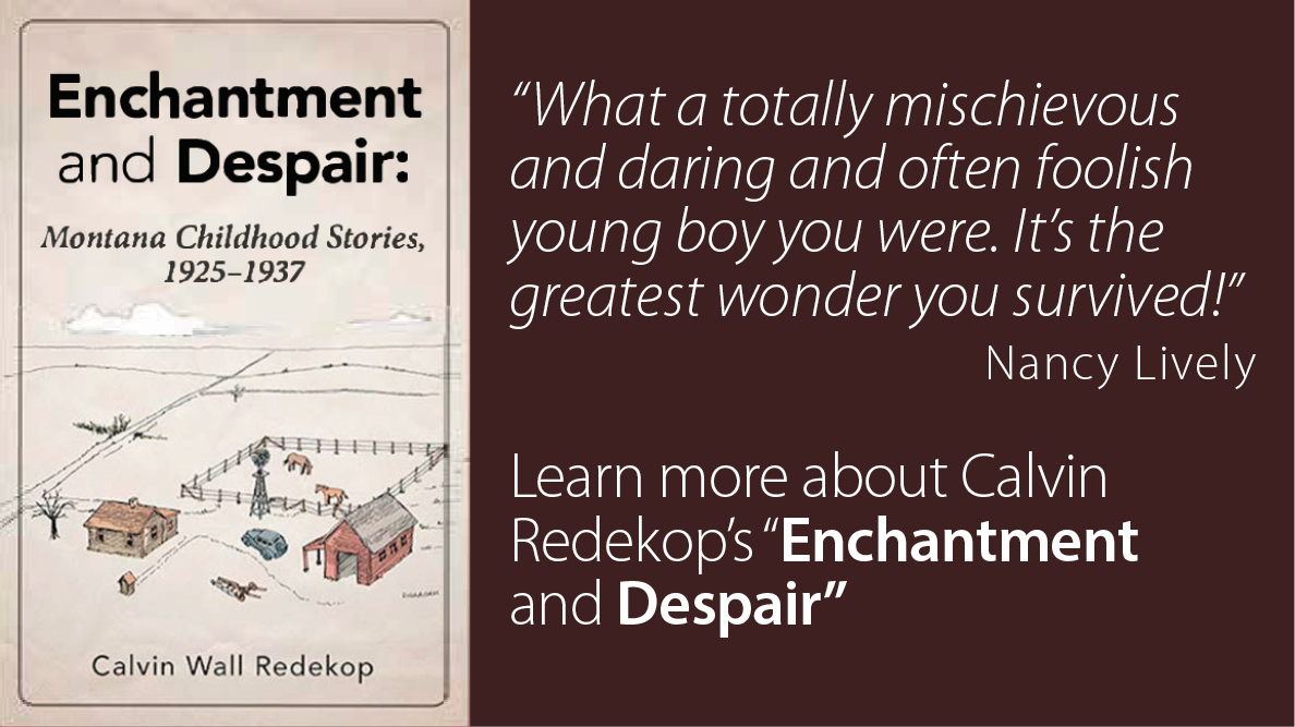 Link to more info on Calvin Redkop's book Enchantment and Despair