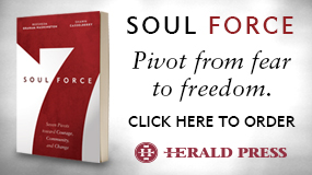 Soul Force MennoMedia book ad
